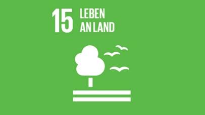 Agenda 2030 Bild 15